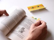 010_sticky_page_markers_desert_in_use_hand